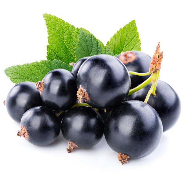 Vinbär svarta